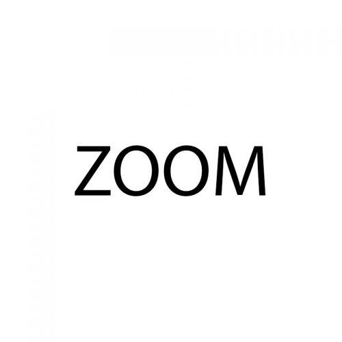 Оптика ZOOM